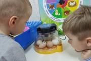 """Įgyvendinta edukacinė programa """"Magiški kiaušiniai"""""""