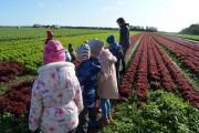 Apsilankymas ūkyje